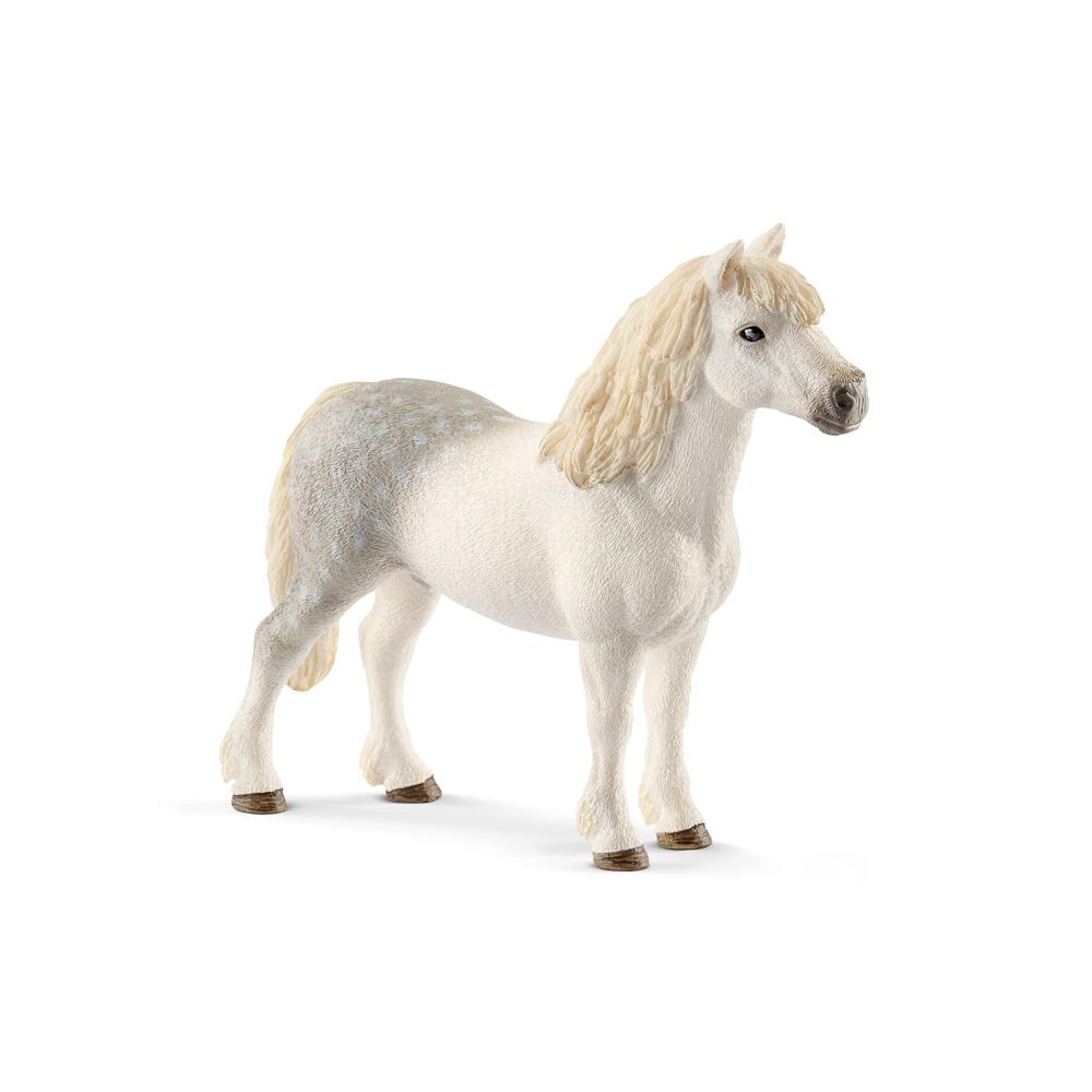 Zvířátko - waleský poník hřebec