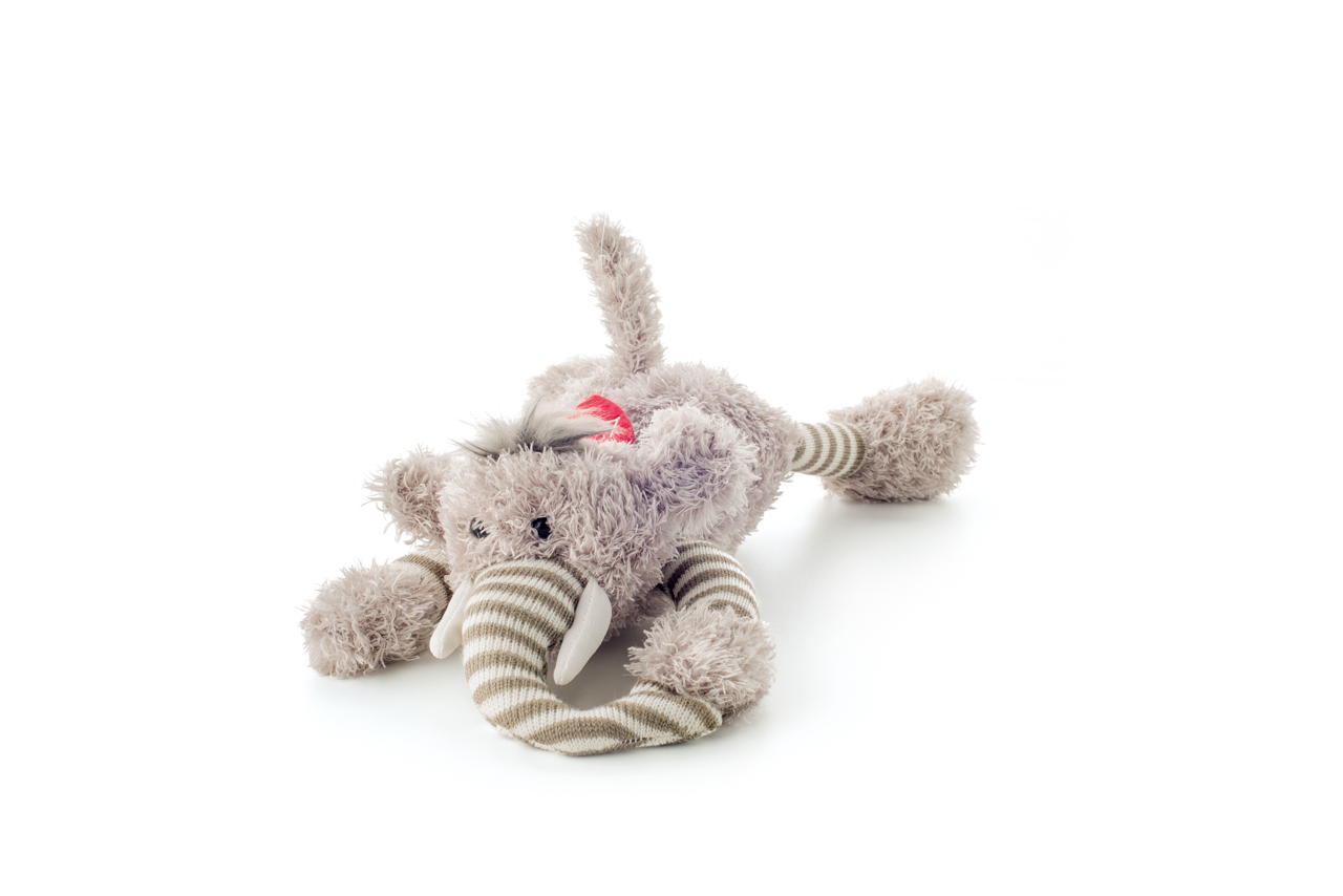 Slon Elvis, ležící